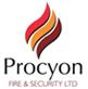 Procyon Fire