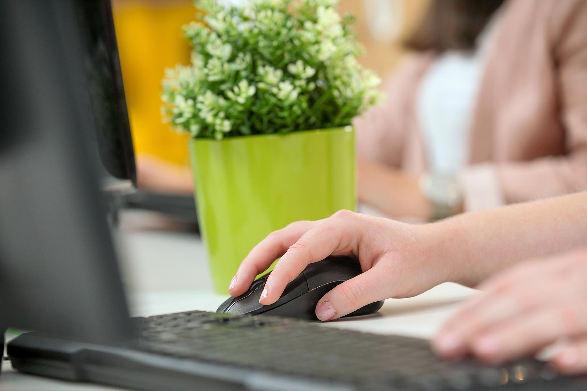 Bec typing