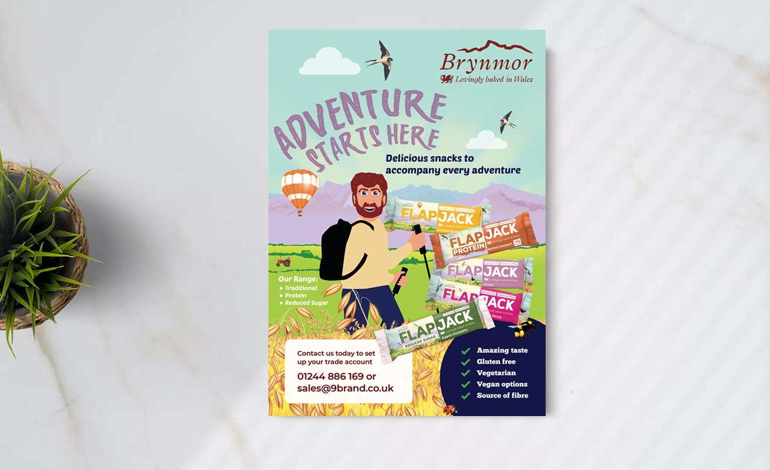 Brynmor marketing flyer