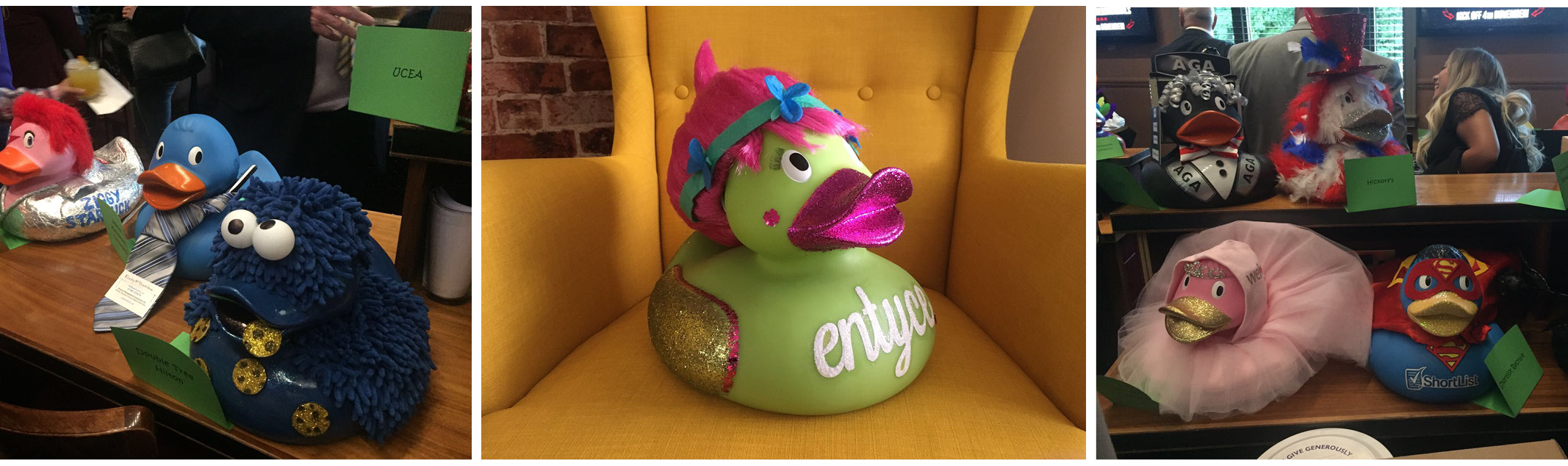 Entyce support the Countess Charity with Poppy the duck