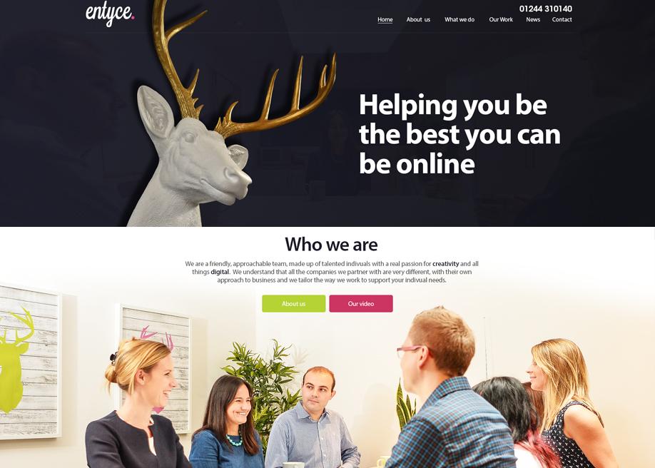 Entyce Website